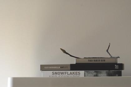 Snowflake-01blog