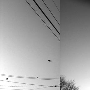 Wires-blog
